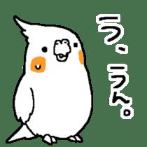 MARU the Cockatiel 2 sticker #4322473
