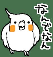 MARU the Cockatiel 2 sticker #4322484