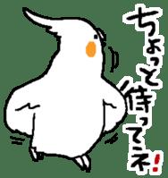 MARU the Cockatiel 2 sticker #4322485