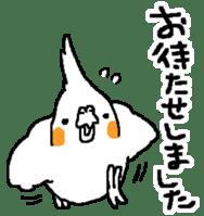 MARU the Cockatiel 2 sticker #4322486