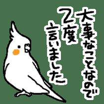 MARU the Cockatiel 2 sticker #4322496