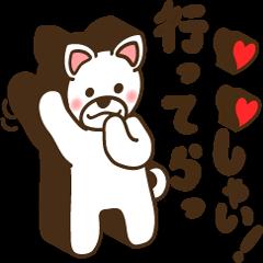 Shiroinu-san