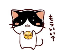 Reminder cat sometimes chick sticker #4349948
