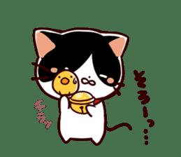Reminder cat sometimes chick sticker #4349969