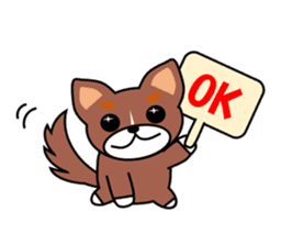 Everyday of Chihuahua brothers sticker #4359456