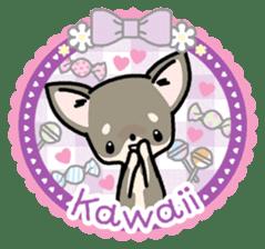 Kawaii Chihuahua2(English) sticker #4391008