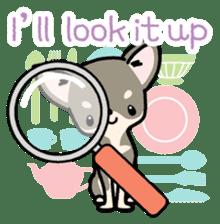 Kawaii Chihuahua2(English) sticker #4391026