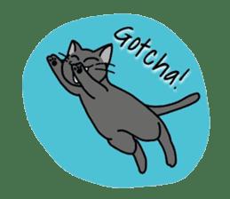 """OK"" Cats(English ver.) sticker #4395139"