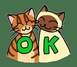 """OK"" Cats(English ver.) sticker #4395141"