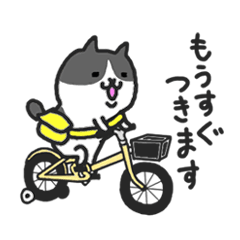 Kawaii! Speaking Japanese cat 2