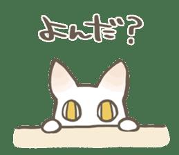 Shiro & Momo sticker #4414436
