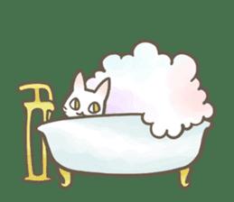 Shiro & Momo sticker #4414457
