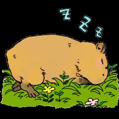 Capybara Life