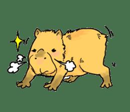 Capybara Life sticker #4420876