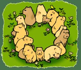 Capybara Life sticker #4420881