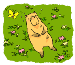 Capybara Life sticker #4420883