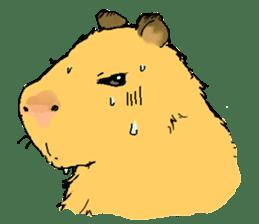 Capybara Life sticker #4420885