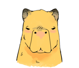 Capybara Life sticker #4420892
