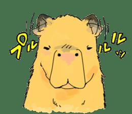 Capybara Life sticker #4420893
