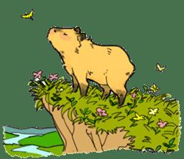 Capybara Life sticker #4420900