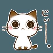 สติ๊กเกอร์ไลน์ Cat appealing with eyes-choco-