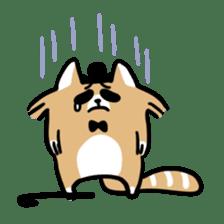 Paul, a gentle racoon sticker #4485834
