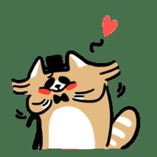 Paul, a gentle racoon sticker #4485854