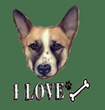 real DOG Sticker sticker #4503288