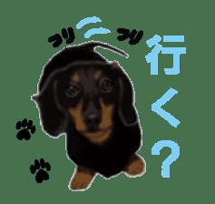 real DOG Sticker sticker #4503290