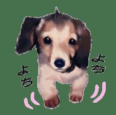 real DOG Sticker sticker #4503291