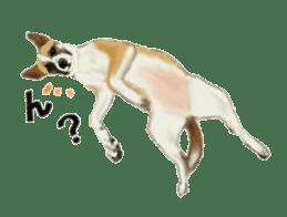 real DOG Sticker sticker #4503305