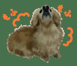 real DOG Sticker sticker #4503306