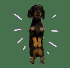 real DOG Sticker sticker #4503310