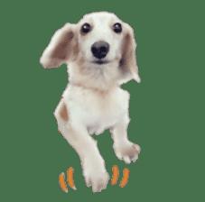 real DOG Sticker sticker #4503326