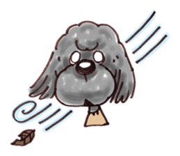 Toy poodle of all sticker #4547470