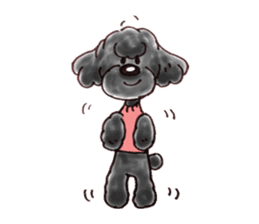 Toy poodle of all sticker #4547490