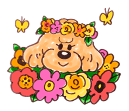 Toy poodle of all sticker #4547493