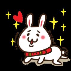 Happy cat and Rabbit