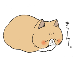 Exotic shorthair cats sticker #4574434