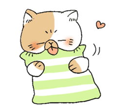 Exotic shorthair cats sticker #4574447