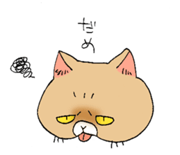 Exotic shorthair cats sticker #4574450