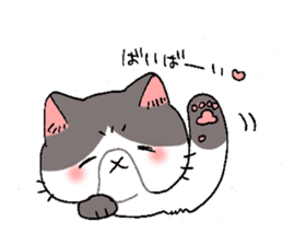 Exotic shorthair cats sticker #4574462