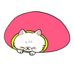 Exotic shorthair cats sticker #4574465