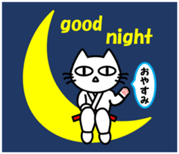 taekwon-do white cat and black cat sticker #4580350
