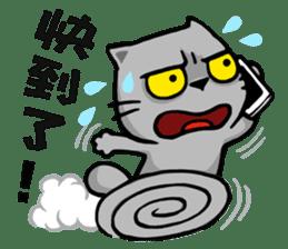 Meow Zhua Zhua - No.5 - sticker #4590025
