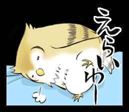 Mikawa samurai and cute owls sticker #4604084