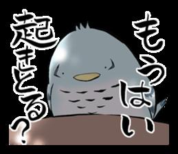 Mikawa samurai and cute owls sticker #4604085