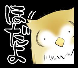 Mikawa samurai and cute owls sticker #4604103