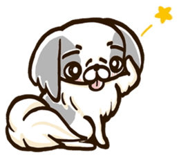 Japanese chin sticker 01 sticker #4617964
