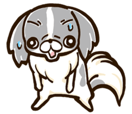 Japanese chin sticker 01 sticker #4617967